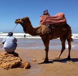 Летим отдыхать в Марокко